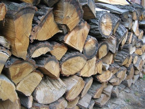 how to properly season and store firewood jacksonville fl
