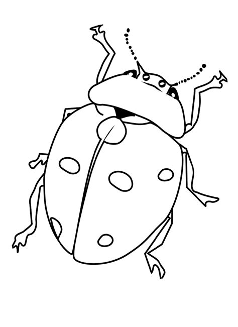 bug coloring page barriee