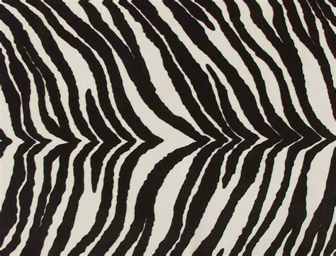 pattern zebra zebra fabric by the yard