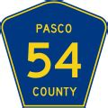 Pasco County Number Search File Pasco County Road 54 Fl Svg