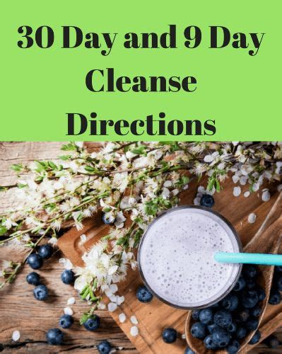 Thrive Health Systems 30 Day Detox by 17 Of 2017 S Best 30 Day Cleanse Ideas On 30