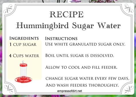 best 25 hummingbird feeder homemade ideas on pinterest