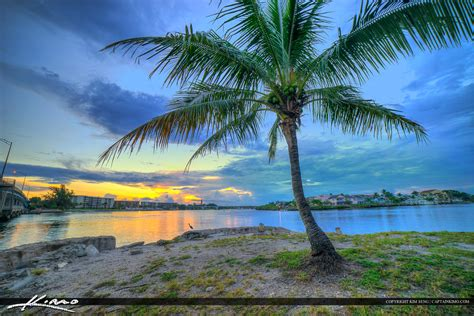 Palm Florida Search Palm Bay Fl To Jupiter Fl Search Results Million Gallery