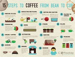 Process Of A Cup Of by 25 Best Coffee Process Images On Coffee Beans