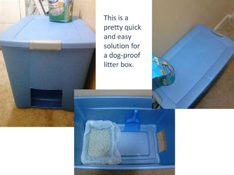 litter box to keep dogs out easy and solution for proof litter box litter box boxes and dogs