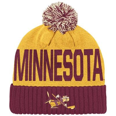 awesome gopher sport equipment the ignite show 93 best images about ski u mah go gophers on pinterest