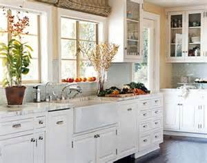 Kitchen With White Cabinets White Kitchen Cabinet Doors Home Furniture Design