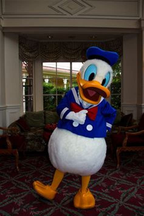 1000+ images about donald duck on pinterest | donald duck