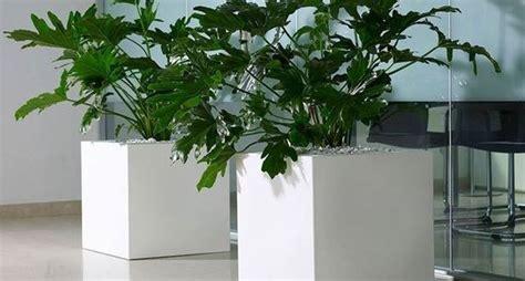 vasi in resina per esterni vasi in resina per esterni vasi e fioriere vasi da