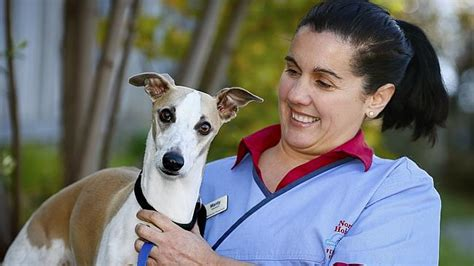 Manty Top Limited vets blind faith in plea for a s best friend herald sun