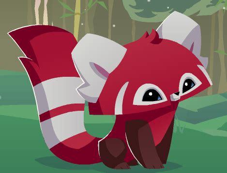 red panda animal jam wiki fandom powered  wikia