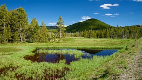 yellowstone national park resor till yellowstone national park usa expedia se