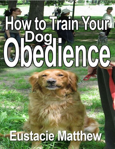 how to obedience your how to your obedience