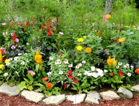 flower garden tips duncanville tx official website gardening tips landscaping