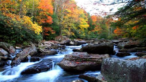 natural autumn mountain river rock noise yellow  red