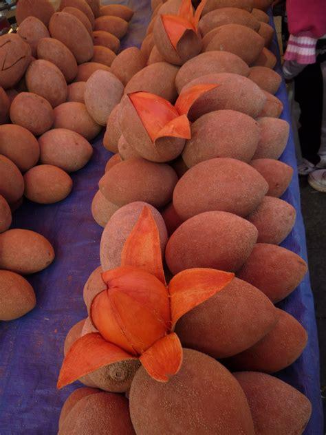 color mamey mamey la fruta de color excepcional y sabor particular