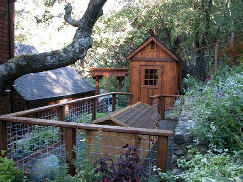 backyard dog run traditional landscape by avant garden