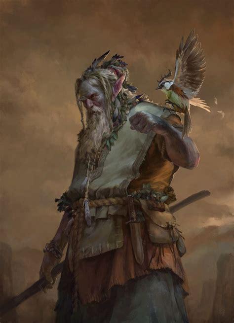 art 93 fracc xix lisr 349 best d d druids wildlife fey half dryads images