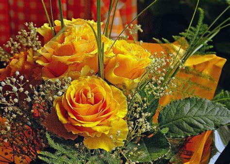 mazzi fiori recisi foto gratis bouquet di fiori bouquet di immagine