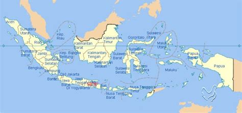 Dod Bebek Hibrida Semarang sumber rejeki farm supplier doc ayam kung luar pulau jawa