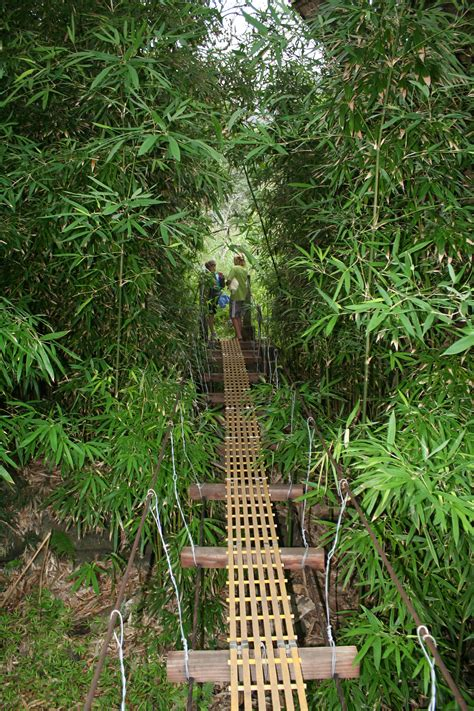 swinging bridges hike maui swinging bridges aka waihe e valley trail maui guidebook