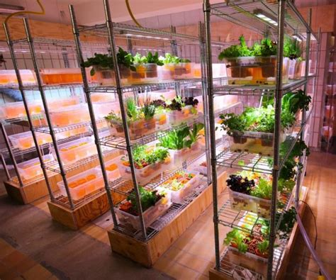 Tiny Homes Designs ikea indoor gardens produce food year round for homes