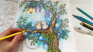 secret garden coloring book where to buy starry country the second tale coloring
