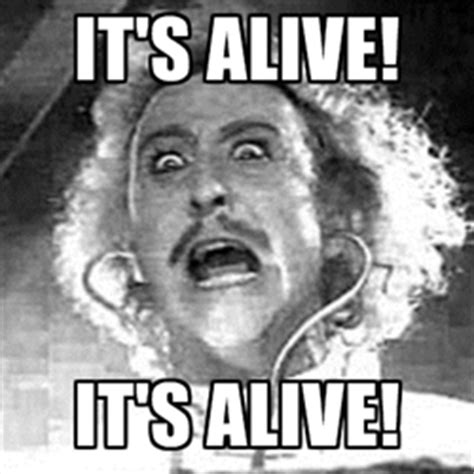 Young Frankenstein Meme - dr theda s crypt quot a z quot quot y quot is for mel brooks quot young