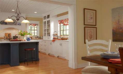 Interior Kitchen Colors Interior Kitchen Paint Colors Picture Rbservis