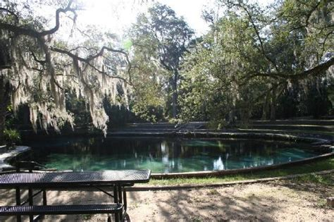 Juniper Springs Cabin by 301 Moved Permanently