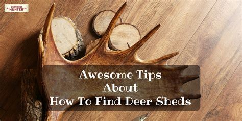 how to a to find sheds deer archives captain