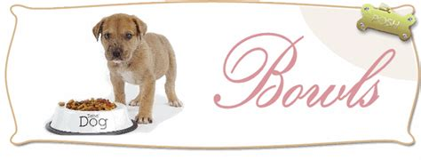 posh puppy boutique designer bowls puppy feeders food bowls for dogs