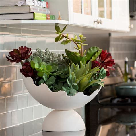 modern indoor planters  watering indoor planters