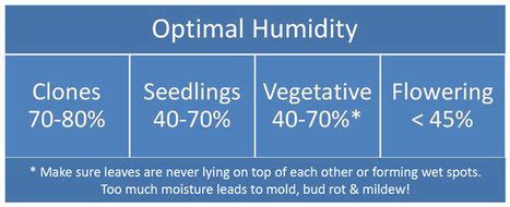 how to raise the humidity in a room grow easy page 7 scoop it