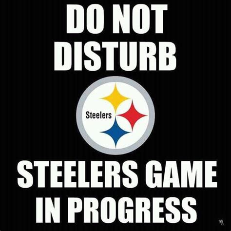 Steelers Fans Memes - 1000 images about steelers on pinterest football season