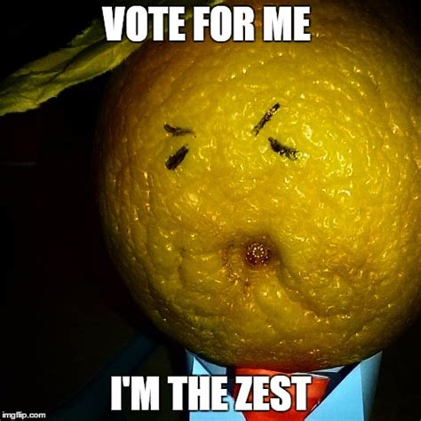 Vote For Me Meme - image tagged in donald trump drumpf imgflip