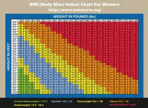 q&a friday – what measurements should i do? | the journey