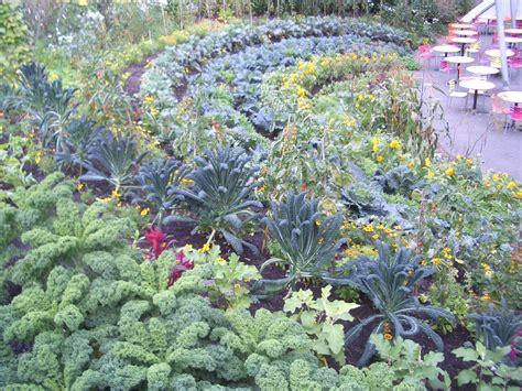 Ornamental Vegetable Garden Edible Gardening Verdant Earth