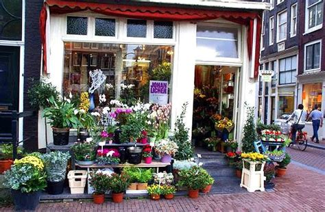 The Flower Shop by Flower Pictures Flower Shops