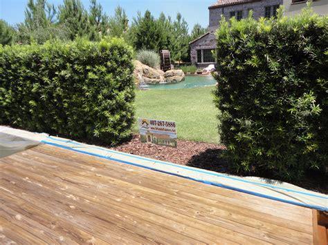 boat dock sealer dock staining sealer wood stain boat orlando