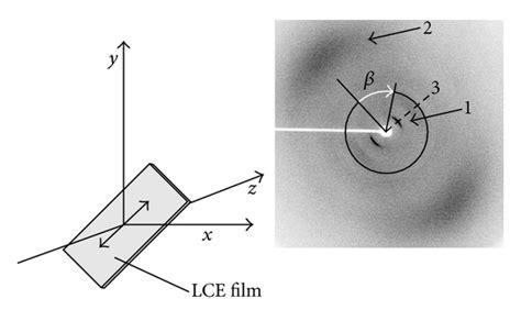sketch diffraction pattern polar liquid crystal elastomers cross linked far from