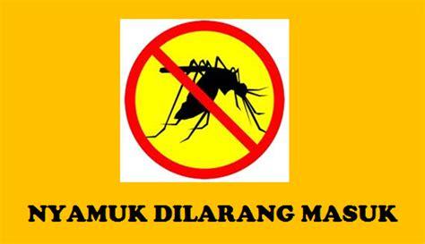 Berapa Tirai Anti Nyamuk Cara Melindungi Cara Alami Terhindar Dari Gangguan
