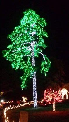 chesapeake energy has wrapped trees on their oklahoma city