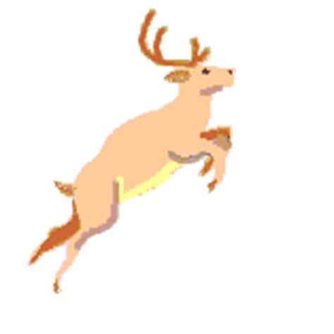 imagenes de animales gif im 225 genes animadas de ciervos gifs de animales gt ciervos