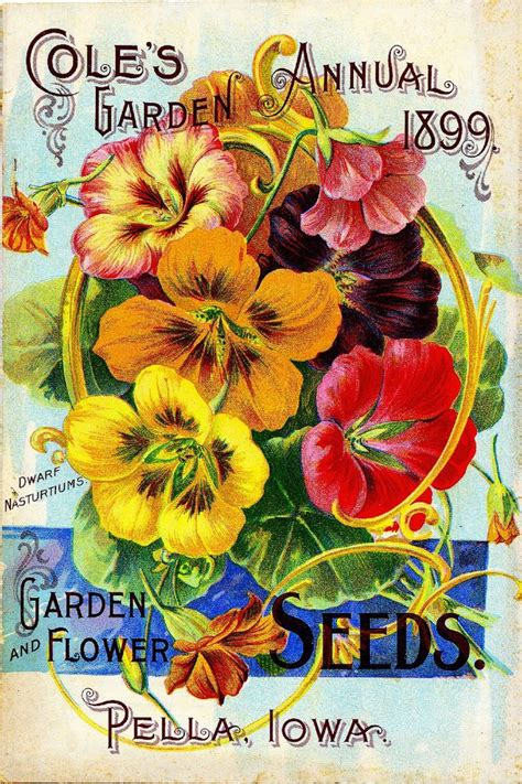 Flower Garden Catalogs 1899 Cole S Garden Vintage Flowers Seed Packet Catalogue Advertisement Poster Ebay