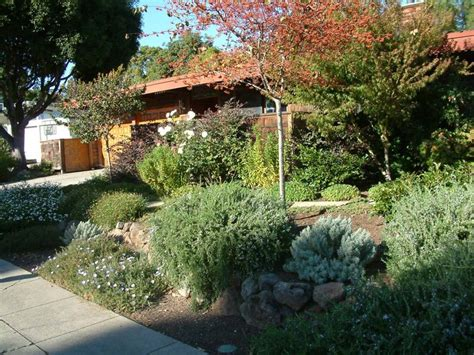 xeriscape backyard top 28 pictures of xeriscape yards all the dirt on
