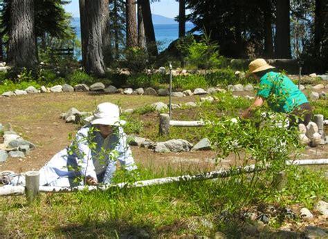 Garden Club Speaker Ideas South Tahoe Gardeners Celebrate 50 Years Of In