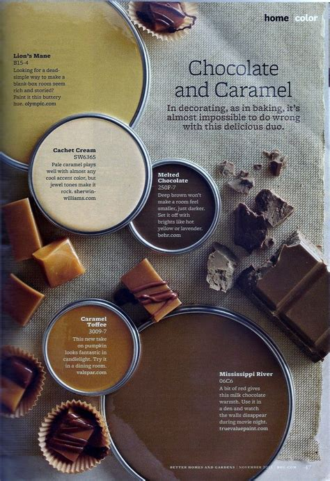 chocolate  caramel paint colors paint color schemes