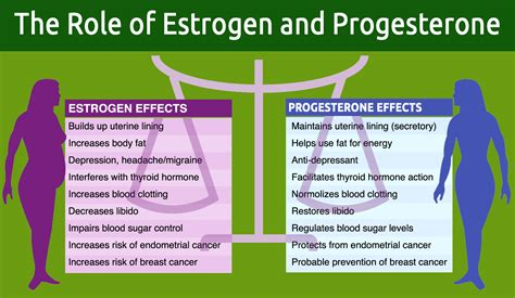 feminizing effects of progesterone in men ehow other hormones the role of estrogen and progesterone