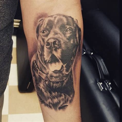 best tattoos to get honor your pet by getting a pet portrait done at mantra
